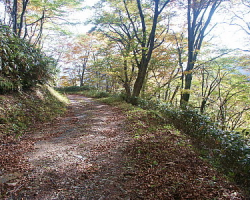 asanabe01
