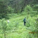 【保全活動】三平山ログハウス周辺草刈り