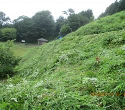 7月14日三平山ログハウス付近草刈りIMG_0231