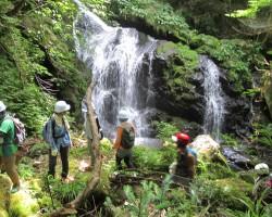 今回は滝は登らず巻き道を通って滝の上へ