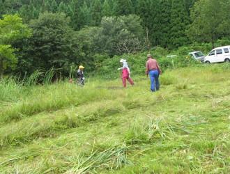明連湿地:周辺は刈り払い機、中心部は人海戦術