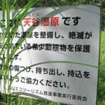 保護活動(天谷湿地植生調査)