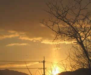 初日の出 太陽柱
