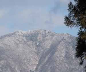 上蒜山山頂付近