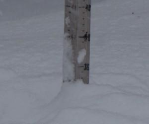 1月19日の積雪33cm
