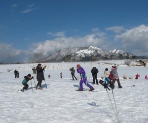 雪原に遊ぶ