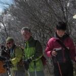 【ツアーレポート】スノーシュー巨木探検ツアー