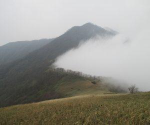 県境の尾根,鳥取県側に発生している濃霧