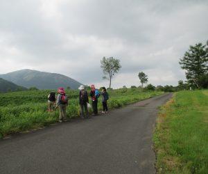 鳩ケ原と三平山
