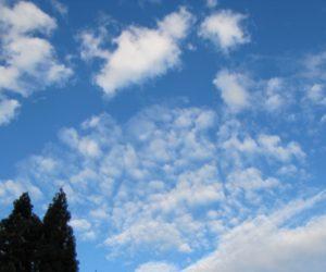 17 日 秋の空