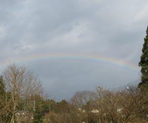 12/9 虹 時雨の虹は低い所へ出来るので平らな虹になります