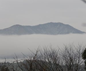 12 /13 雲海に浮かぶ上蒜山  茅部野より 霧ではなく層雲が蒜山の裾野をとりかこんでいました