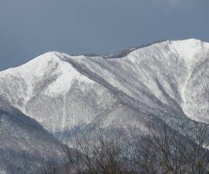 1/16   上蒜山、大分雪が深くなりました