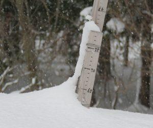 1/16   積雪63cm
