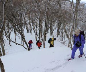 高倉山に向けて登り返す。