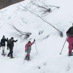 【ツアーレポート】三平山スノーシュー登山ツアーを開催しました
