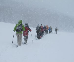 1/21  スノーシューハイキング 上蒜山山麓の百合原牧場付近、上蒜山スキー場は今シーズンから休止、地元の方にお願いして駐車場の除雪をしてもらいました。 積雪季の登山には駐車場がありません。 だんだん村など付近の型の迷惑にならないよう確認してください。