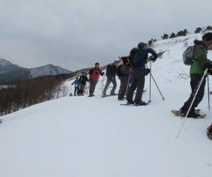 三平山スノーシュー 林を抜けて雪原を行く
