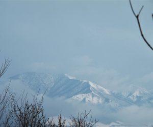 三平山スノーシュー 土塁より上蒜山 上蒜山には雲がかかってい山頂が見えません。
