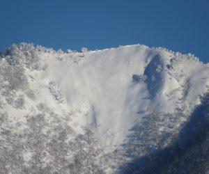 1/25 上蒜山山頂 左の木がはえている所が山頂 茅部野より