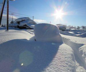 1/25 雪に埋まった車