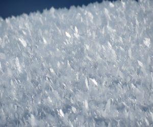 1/26 雪の霜柱 白樺の丘付近にて、 茅部野の最低気温011.7度、白樺の丘では-13度くらいでしょうか
