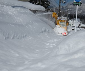 2/12  歩道の除雪  蒜山には歩道用の除雪車があり車道と同様歩道もきっちり除雪します。 昨日も除雪したはずですが、、、。