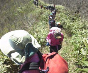 中蒜山から下蒜山への縦走路