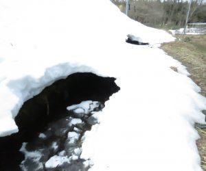 3月24日 スノーブリッジ もう危なくて渡れません