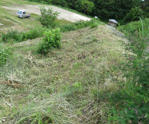 7/5 三平山ログハウス付近の草刈  雨の中の草刈、草原の保護と里山保護の草刈、ついでにログハウス入り口付近も