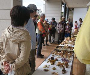 キノコ観察会 長澤先生による鑑別 食べれる茸、毒の見分け方をそのキノコごとに丁寧に説明して下さり、皆さん熱心にメモを取っていました。