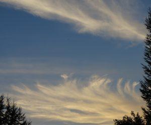 9/26 秋の雲