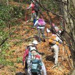 【ツアーレポート】毛無山~朝鍋鷲ヶ山縦走登山を開催しました