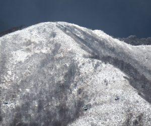 11/19 上蒜山8合目付近 上蒜山に初雪  茅部野にて