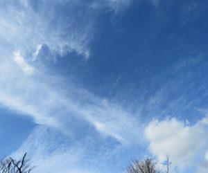 11/25 巻雲と層積雲