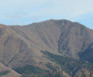 12/2 上蒜山 茅部野より 寒々としていて早く雪の衣をまといたいと言っているようです。