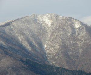 12/7 上蒜山  茅部野より,左の尾根の上に白く見えるのが三角点、ブナが生い茂っていて眺望は望めません