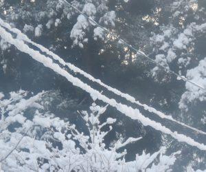 12/8 電線に着雪  湿った雪だったのですね