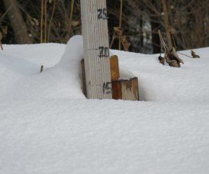 12/14 積雪10㎝