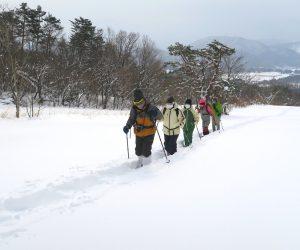 新雪を行く 雪が消えると牧草地になります。