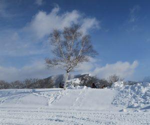 雪恋祭り2月3日 ②白樺と上蒜山