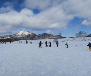 雪恋祭り2月4日 ②広大な雪原を我が物顔に歩き回る