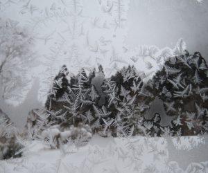 1/30 窓ガラスの霜