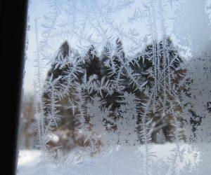 2/6 窓の霜