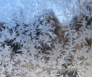 2/14 窓の霜