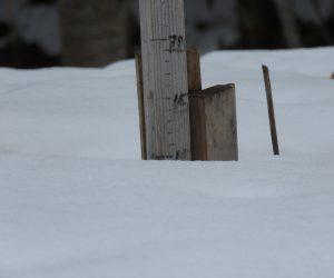2/22茅部野の 積雪10㎝