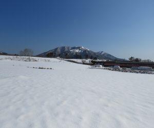 2/23 上、中蒜山  下蒜山は中蒜山の後ろに隠れています、酪大牧草地にて