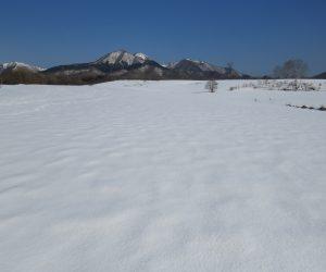 2/23 二股山、皆ヶ山、アゼチ、左の隅に大山がチラリと見えます。酪大牧草地にて