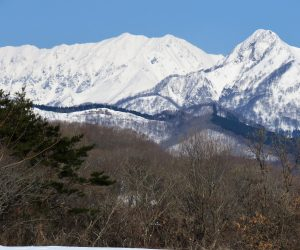2/23 大山、烏ヶ山 烏ヶ山は山陰のマッターホルンの呼び名があります、酪大牧草地にて
