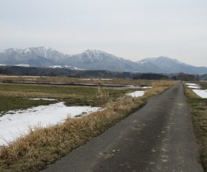2/28 雪の消えた茅部野より蒜山三座を望む